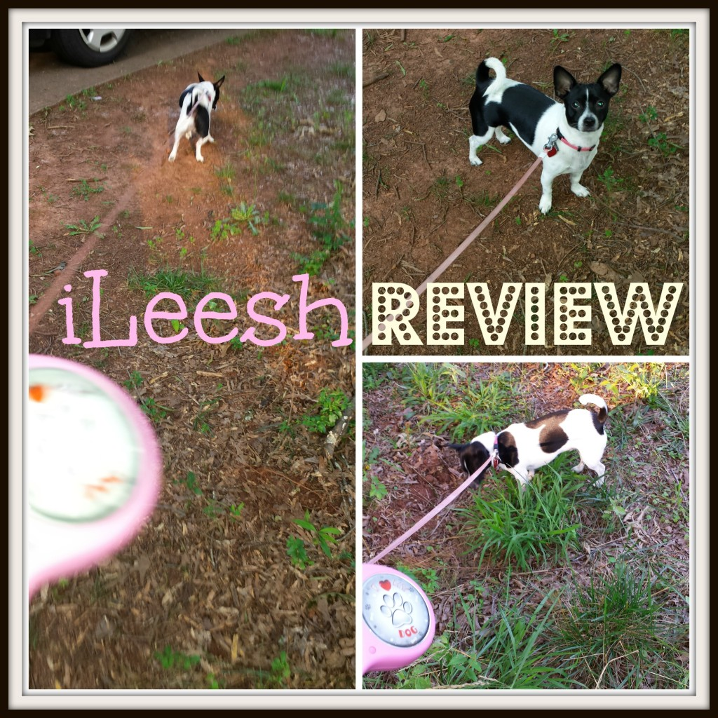ileesh review collage
